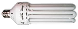 125  Compact Fluorescent Warm